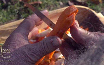 Zamă de cap de batal cu măcriș